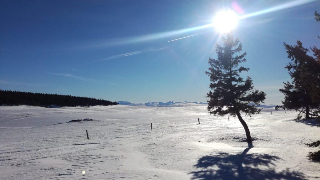 Cézallier sous la neige
